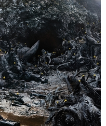Simen Johan: Until the Kingdom Comes