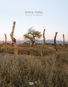 Teresa Moller and Associates: Unveiling the Landscape