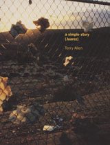 Terry Allen: A Simple Story (Juarez)