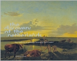 The Discovery of the Netherlands