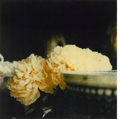 The Essential Cy Twombly: Beautiful in Their Subversion of 'Beauty'