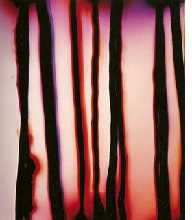 """Strings of Life"" (1999) is reproduced from <I>Wolfgang Tillmans: Abstract Pictures</i>."