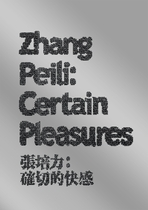 Zhang Peili: Certain Pleasures