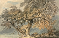 A Great Tree painting reproduction, Joseph Mallord William Turner