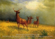 Deer in a Field by Albert Bierstadt