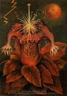 Flower of Life painting reproduction, Frida Kahlo