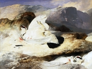 Ptarmigan in a Landscape painting reproduction, Sir Edwin Landseer