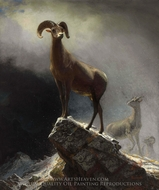 Rocky Mountain Sheep painting reproduction, Albert Bierstadt