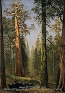 The Grizzly Giant Sequoia, Mariposa Grove, California by Albert Bierstadt