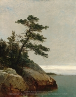 The Old Pine, Darien, Connecticut painting reproduction, John Frederick Kensett