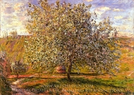 Tree in Flower near Vetheuil painting reproduction, Claude Monet