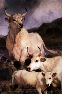 Wild Cattle at Chillingham painting reproduction, Sir Edwin Landseer