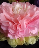 "BLOWOUT 14"" Multi-Color Tissue Paper Flower Decorations (Pink Combo, 3 PACK)"