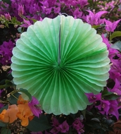"BLOWOUT 8"" Light Lime Green Tissue Paper Flower Rosette Fan Decoration (6 PACK)"