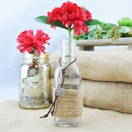 Boho Chic Crafted Glass Message Bottle w/ Cork, Burlap (Dove Sea Style 2)