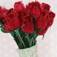 Feather Roses