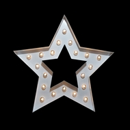 Marquee Light Star Shape LED Metal Sign, White (Battery Operated)