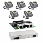 Avaya IP406 V2 Starter Package