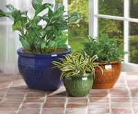 Jewel-toned Glazed Planter Set 38899