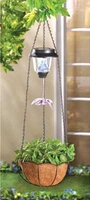 Solar Hummingbird Hanging Basket 14630