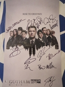 Gotham cast autographed 2015 Comic-Con poster Donal Logue David Mazouz Ben McKenzie Sean Pertwee Erin Richards Robin Lord Taylor