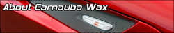 About Carnauba Wax