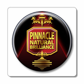 Pinnacle Car Care Kits