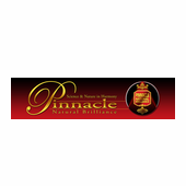 Pinnacle Garage Banner, 14 x 55 inches