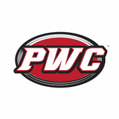 PWC Wheel Cleaner