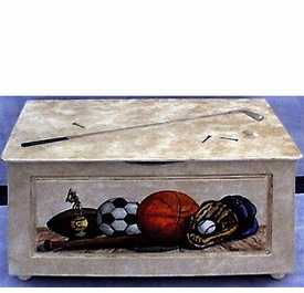 toy chest (vintage sports)