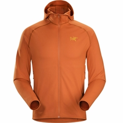 Click to enlarge image of ARC'TERYX Adahy Hoody (Men's)