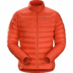 Click to enlarge image of ARC'TERYX Cerium LT Jacket (Men's)