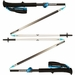 Black Diamond Distance FL Z Trekking Poles
