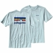 Patagonia Line Logo Cotton T-Shirt (Men's)