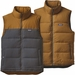 Patagonia Reversible Bivy Down Vest (Men's)