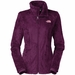 The North Face Osito 2 Jacket (Women's)