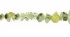 Green Prehnite Chip Beads 5-8mm