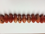Saucer limestone apple coral beads 20mm
