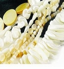 Troca Mother of Pearl (MOP) beads
