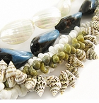 Whole Shell Beads