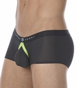 Gregg Homme Fake It Boxer 122005