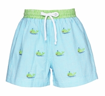 Anavini Baby / Toddler Boys Turquoise Gingham Seersucker / Embroidered Green Whale Swim Trunks
