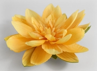 Yellow Floating Lotus Flower 12 Pack