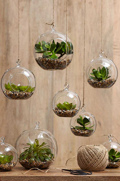 Http Www Save On Crafts Com Succulent Decorating Ideas Html