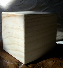 "3.5"" Hollow Pine Wood Blocks"