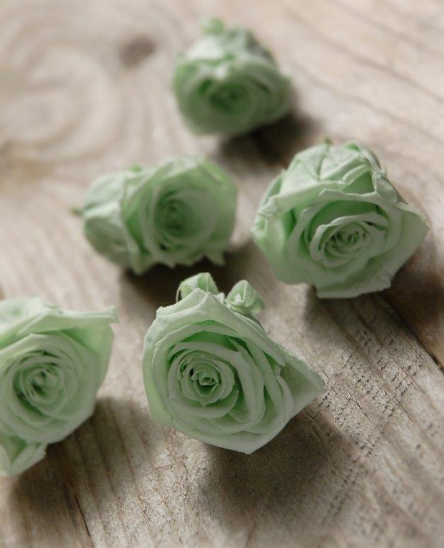 Preserved Mint Green Rose Heads 1in Pack of 12