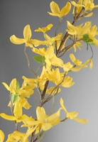 Forsythia Garlands 6ft