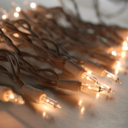 Clear Mini String Lights | White Wire | 100 Bulb
