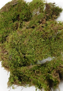 Moss Sheets Natural 1.5 oz. bag