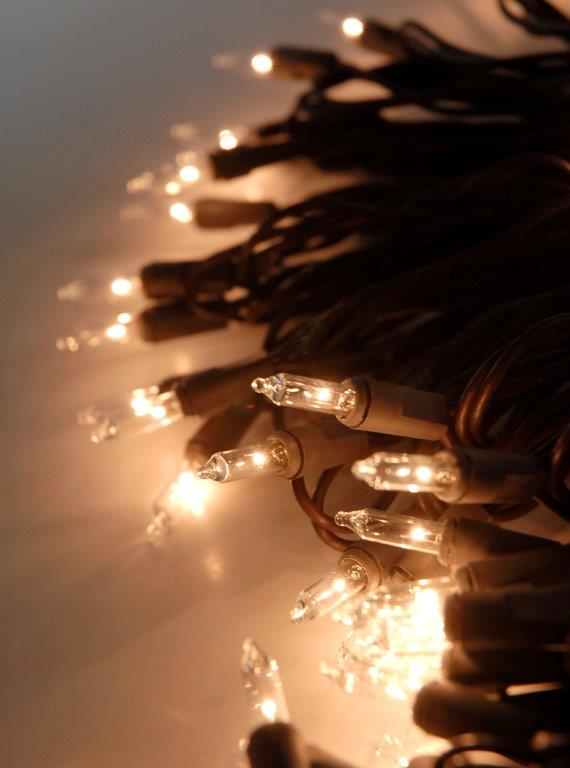Clear String Lights Brown Wire 100 Bulb